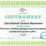 2008 (2)